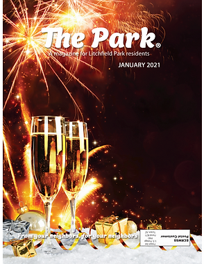 The Park_Cover Jan2021.png