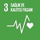 UNDP sürdürülebilir.png