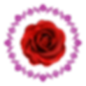 rose-12-and-fuscia-border.png