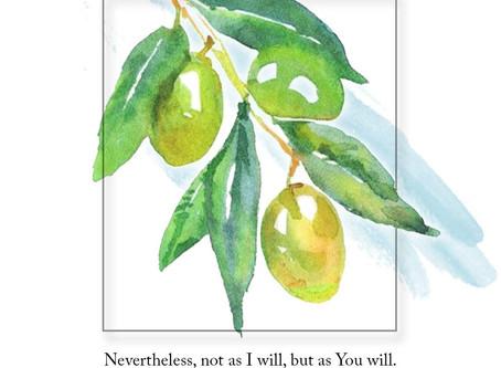 Gifts in Gethsemane