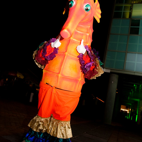 Seahorse Walking Head