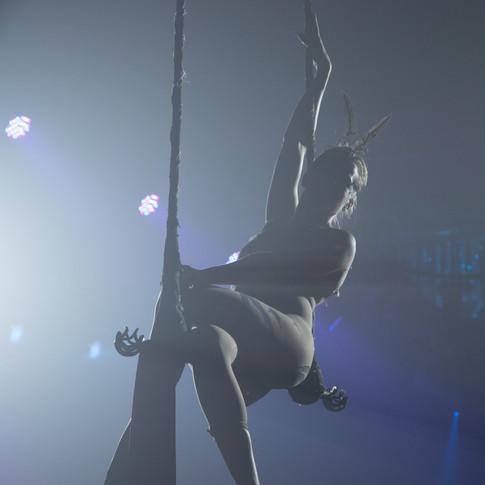 Aerial Swing Performer
