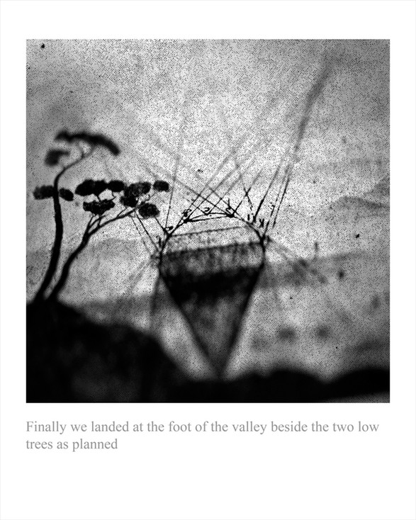 8.  FINALLY WE LANDED AT THE FOOT OF THE VALLEY BESIDE THE TWO LOW TREES AS PLANNED (2010) by LEE Ka Sing 李家昇