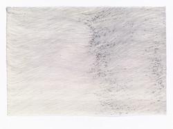 WAI Pong Yu韋邦雨 LAKEDREAM 2 2019  Ballpoint pen on paper 68 x 100 cm