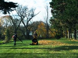 Fall & Spring Clean-ups