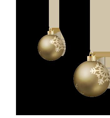 ornaments copy.png
