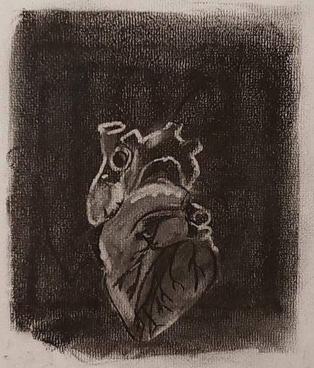 Heart Organ - Zion, 10 yrs old