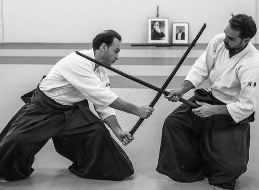 Stage d'Aïkido avec Michaël MARTIN 5éme Dan