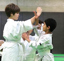 Aïkido Meyzieu enfants en action