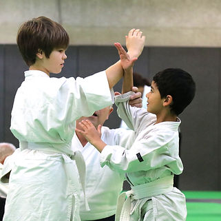 Aikido%20Enfant%20Action_edited.jpg