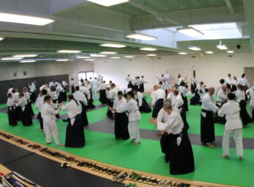 Journées portes ouvertes de l'aikido à Meyzieu