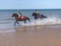 beachsea2.jpg