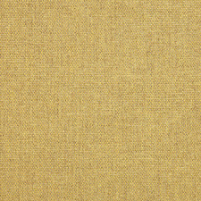 Bearsden - Yucca (52534-08)