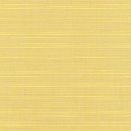 Fortrose - Maize (73829-09)