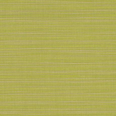 Fortrose - Asparagus (73829-15)