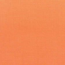 Union - Carrot (12386-36)