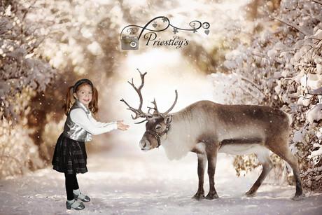 07 - Whimsical Christmas
