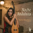 Translation Project: 'Noche andaluza'