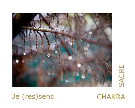Chakra sacré, les pierres pour le chakra sacré en lithothérapie.