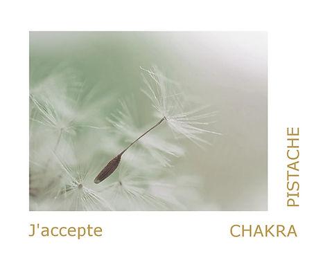 Chakra pistache, les pierres pour le chakra pistache en lithothérapie.