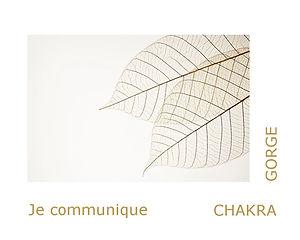 chakra de la gorge, chakra laryngé, thérapeute énergétique, magnétiseuse, maître reiki usui.