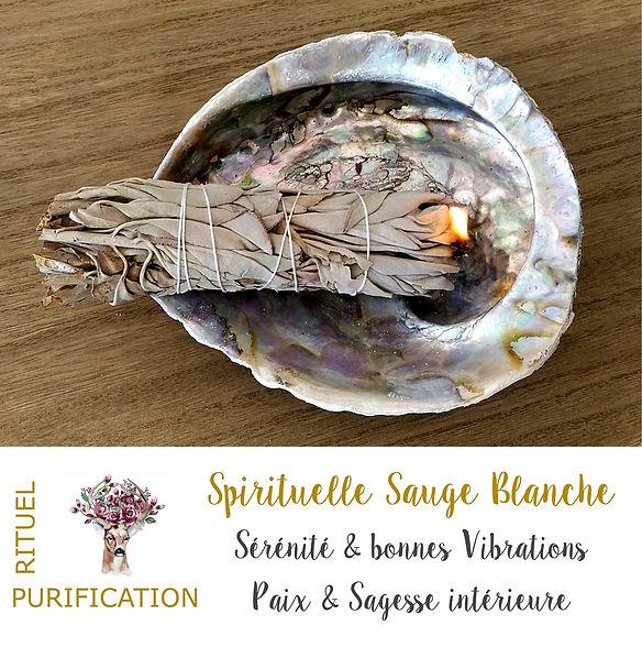 Sauge blanche bâton et smudge pour purification et fumigation