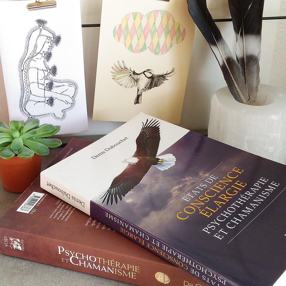 Chamanisme livre. Pratique chamanique livre. Recouvrement d'âme livre. Psychothérapie chamanique.