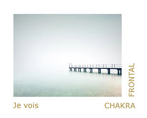 chakra frontal, chakra du troisième oeil, thérapeute énergétique, magnétiseuse, maître reiki usui.