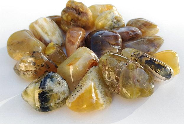 Opale jaune pierre polie