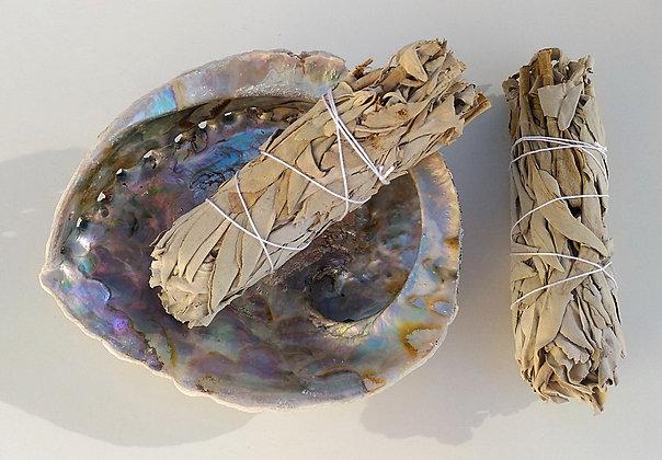 KIT FUMIGATION Bâtons de sauge blanche et coquillage ormeau
