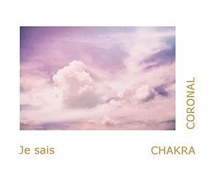 chakra couronne, chakra coronal, thérapeute énergétique, magnétiseuse, maître reiki usui.