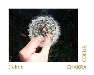 chakra du coeur, chakra cardiaque, thérapeute énergétique, magnétiseuse, maître reiki usui.