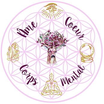 karmathérapie, hypnose spirituelle, magnétismeà distance, magnétiseur à distance, thérapie karmique, hypnose régressive