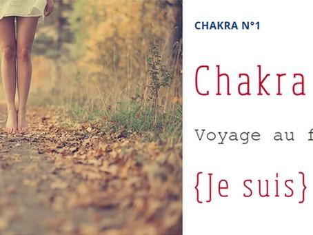 Les chakras, système énergétique