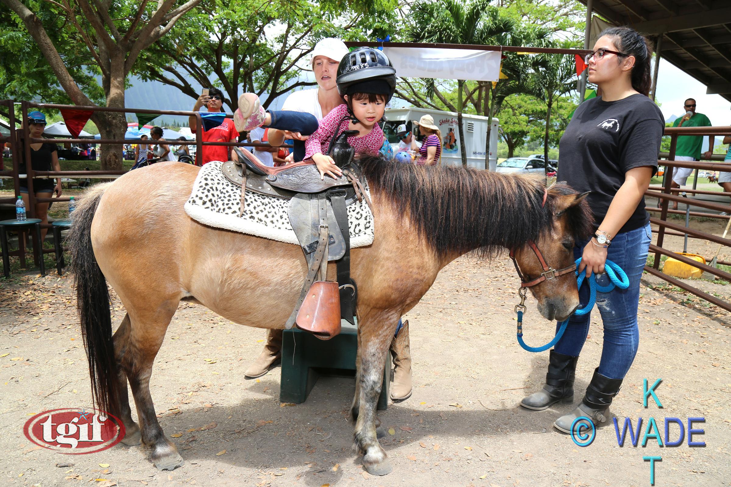 TGF HORSE SHOW 10A