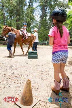 TGF HORSE SHOW 12A