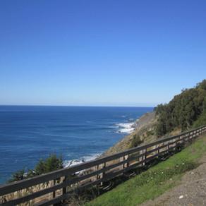 Uma viagem pelo Big Sur, a estrada icônica da Califórnia