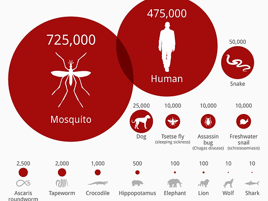 Statistics of People Dying by these Deadliest Animals On Earth