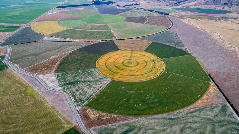 Crop Circles: Overnight Shocking Activity that Proves the Survival of Alien