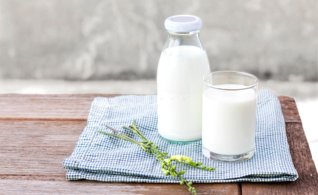 Why is milk white and not red, green or transparent?