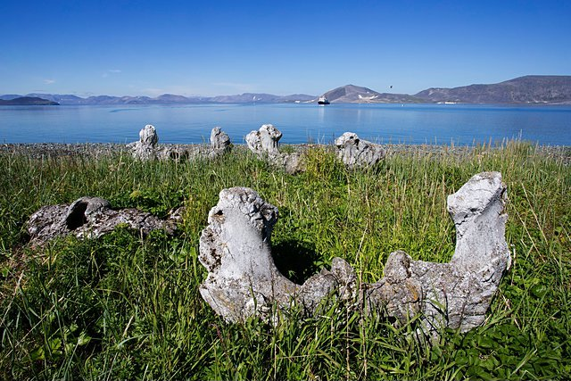 Whale Bone Alley: Siberia's Mysterious Shore where Whale Bones are Stabbed Deep into the Earth