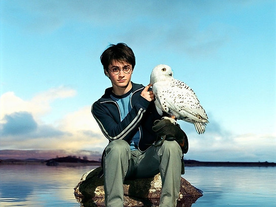 What if Harry Potter was a Religion? How Crazy Can You Go To Prove Yourself to be a True Harry Fan!