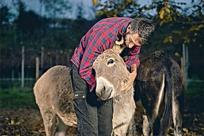 Adult Jokes: Whose is Bigger Mine or Yours? Donkey in a Bar!
