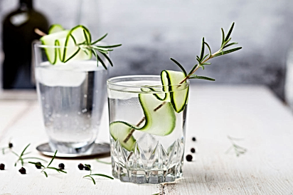 History of Gin: Know the Insane History of Gin From its Medical Beginnings  to Smooth Spirit