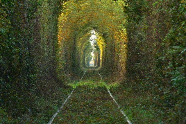 Tunnel Of Love: Story Behind The Mesmerizing Ukraine's Tunnel That Grants a Wish To The True Couple