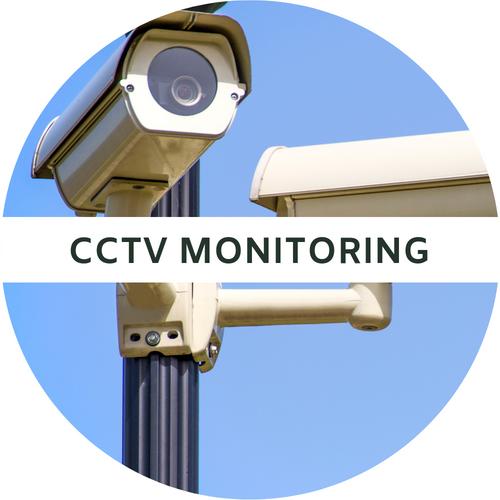 cctv monitoring.png