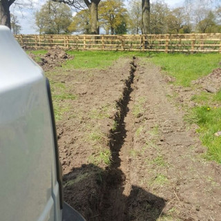 Hedge Plant Fencing with Drainage
