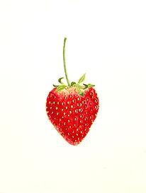 Strawberry with stem.jpg