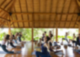 yoga with people.jpg