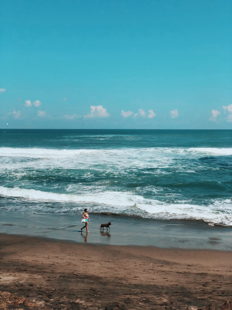 WHERE TO EAT IN CANGGU, BALI? INSTAGRAM-ABLE?